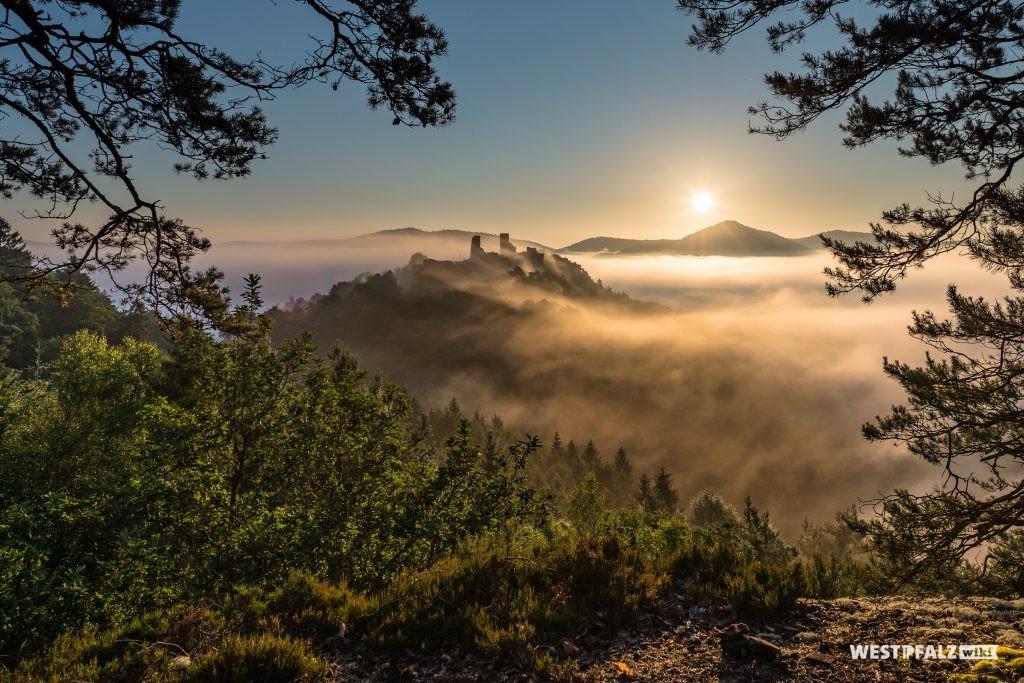 Blick auf die Burgengruppe Dahn bei Nebel.