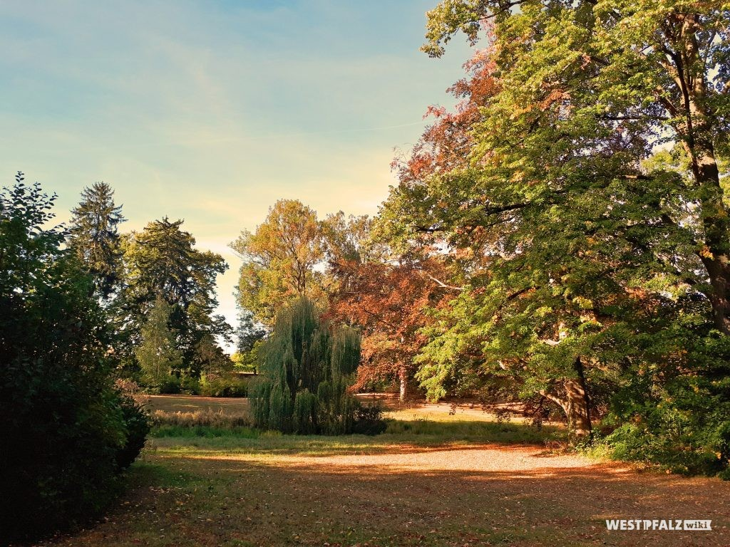 Blick in den herbstlich gefärbten Schlossgarten des Barockschlosses in Kirchheimbolanden mit seinen seltenen Strauch- und Baumarten.