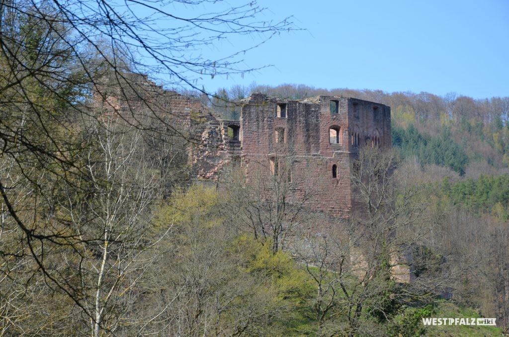 Blick auf die Burg Frankenstein von Süden