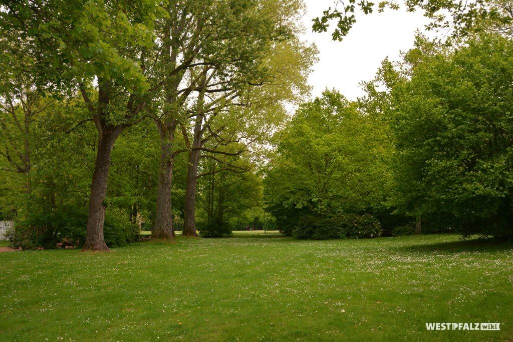 Wiesenfläche im Volkspark in Kaiserslautern