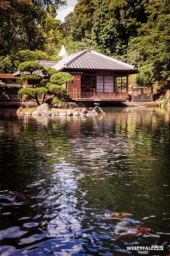Im Japanischen Garten Kaiserslautern