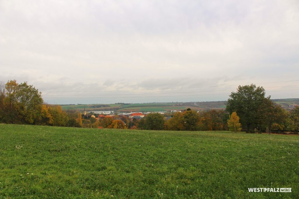 Aussicht von der Parkanlage Schillerhain in Richtung der im Tal gelegenen Stadt Kirchheimbolanden (2017).
