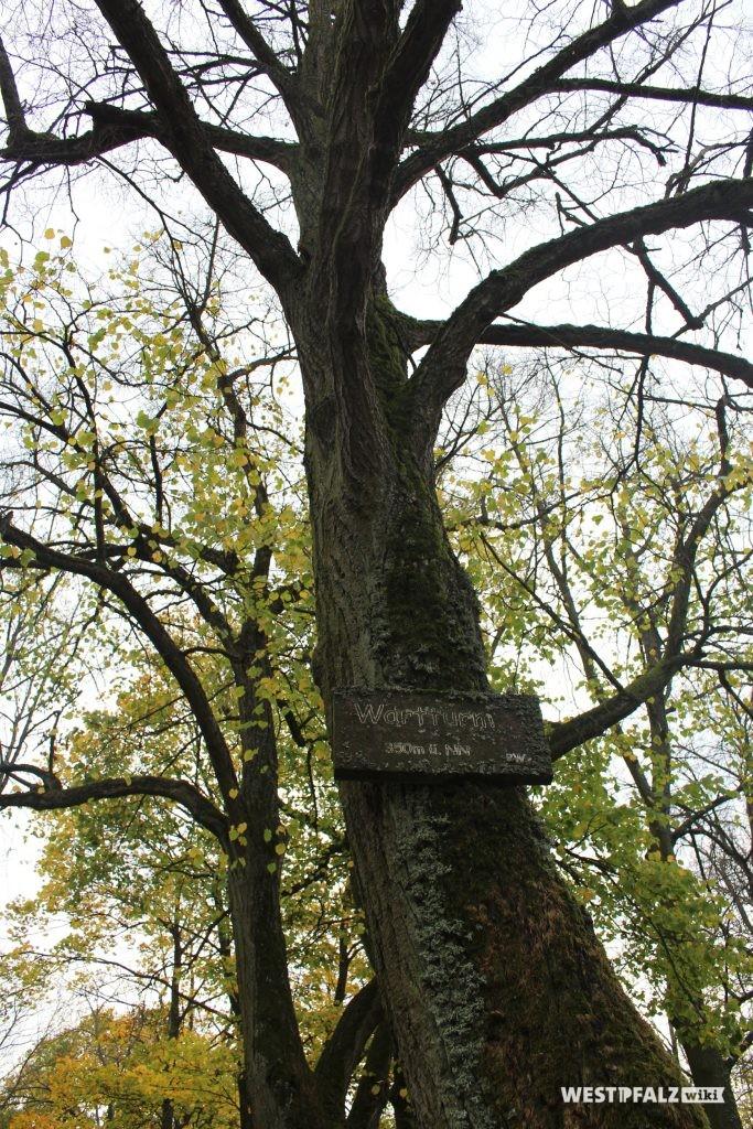Wegweiser zum Wartturm bei Kirchheimbolanden
