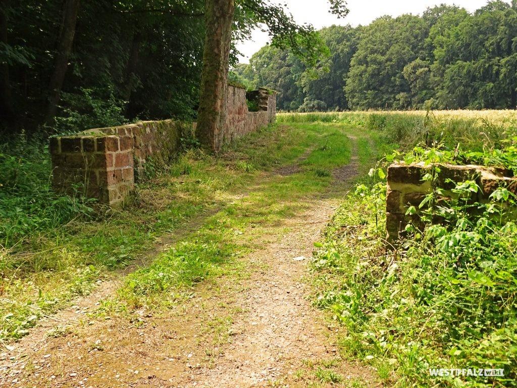 Teil der Mauer, die den Wildrosengarten in Zweibrücken begrenzt.