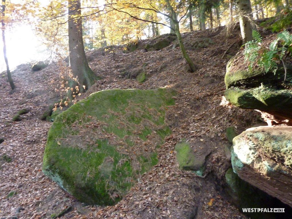 """Ein mit Moos bewachsener flacher Sandstein bildet das """"Dach"""" der Stumpfwaldhöhle bei Ramsen"""