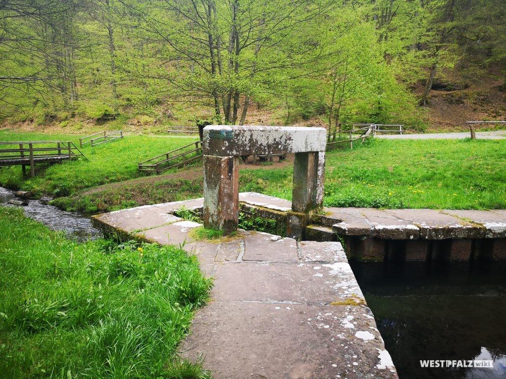 Auslaufbauwerk mit Damm des Biedenbacher Woogs