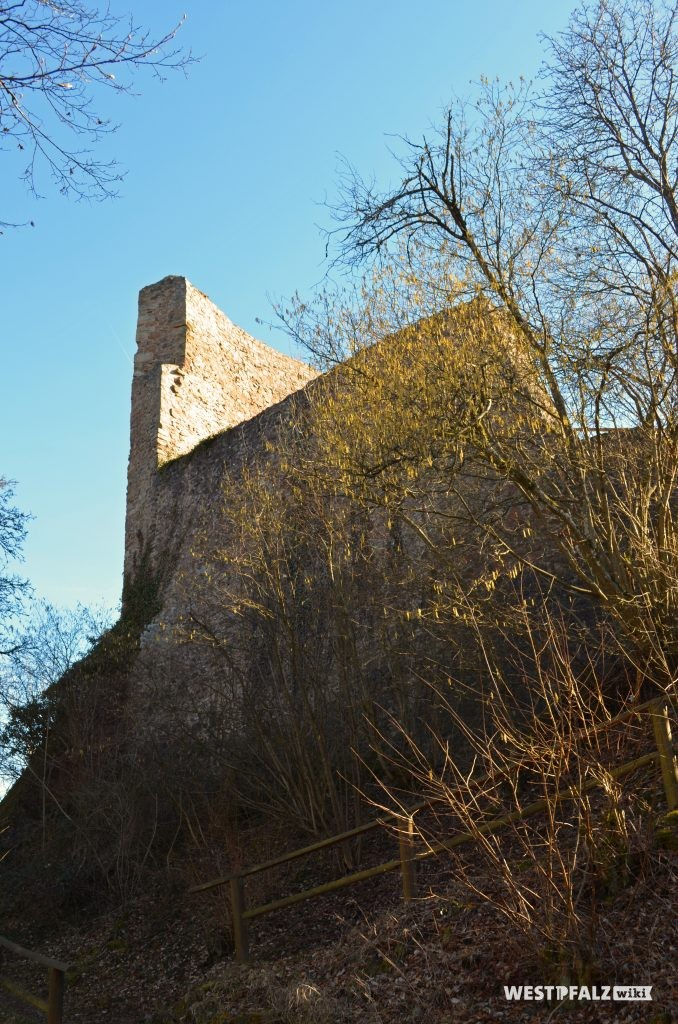 Ruine der Michelsburg aus Nordosten