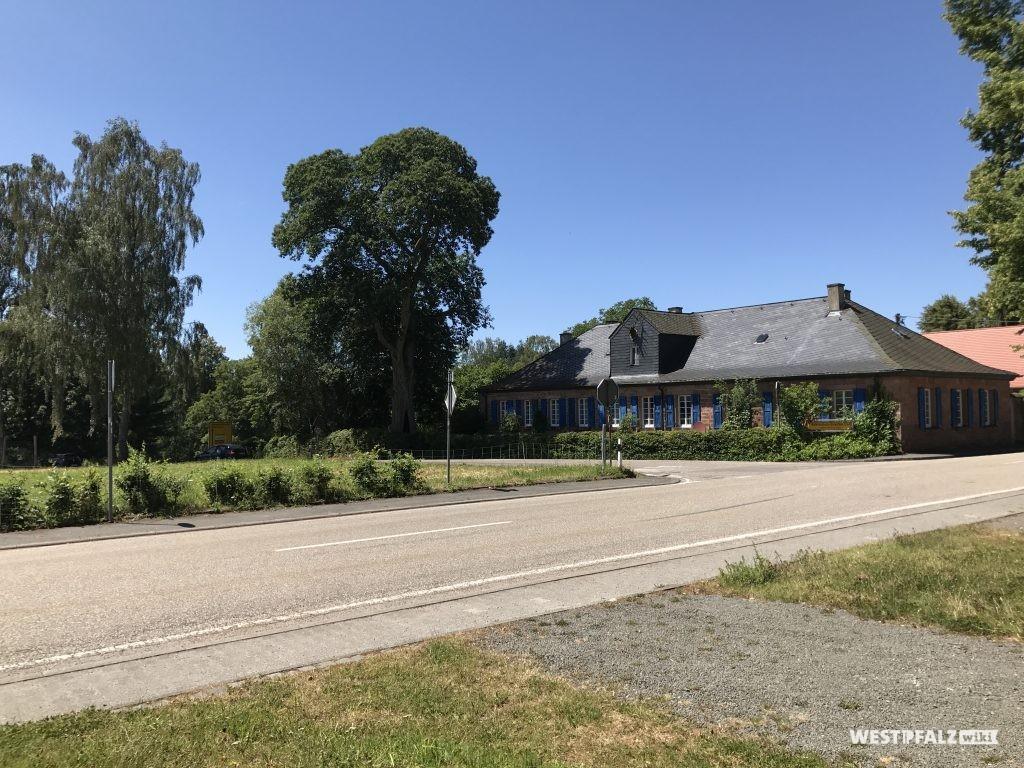 """""""Altes Forsthaus"""" mit dem Kastanienbaum (Nautdenkmal)"""