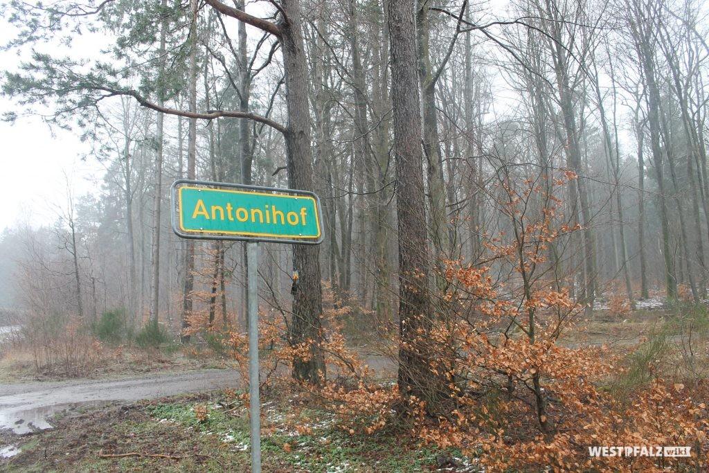 Antonihof