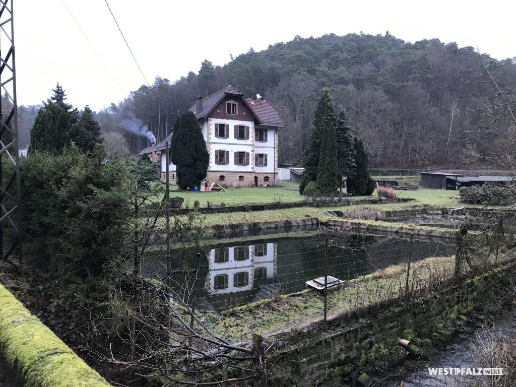 Altes Jagdhaus. Davor ein angelegter Weiher