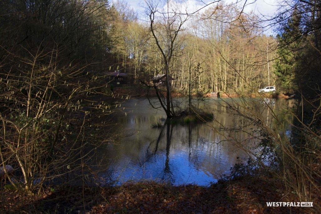 Fischweiher an der Waldvereinshütte