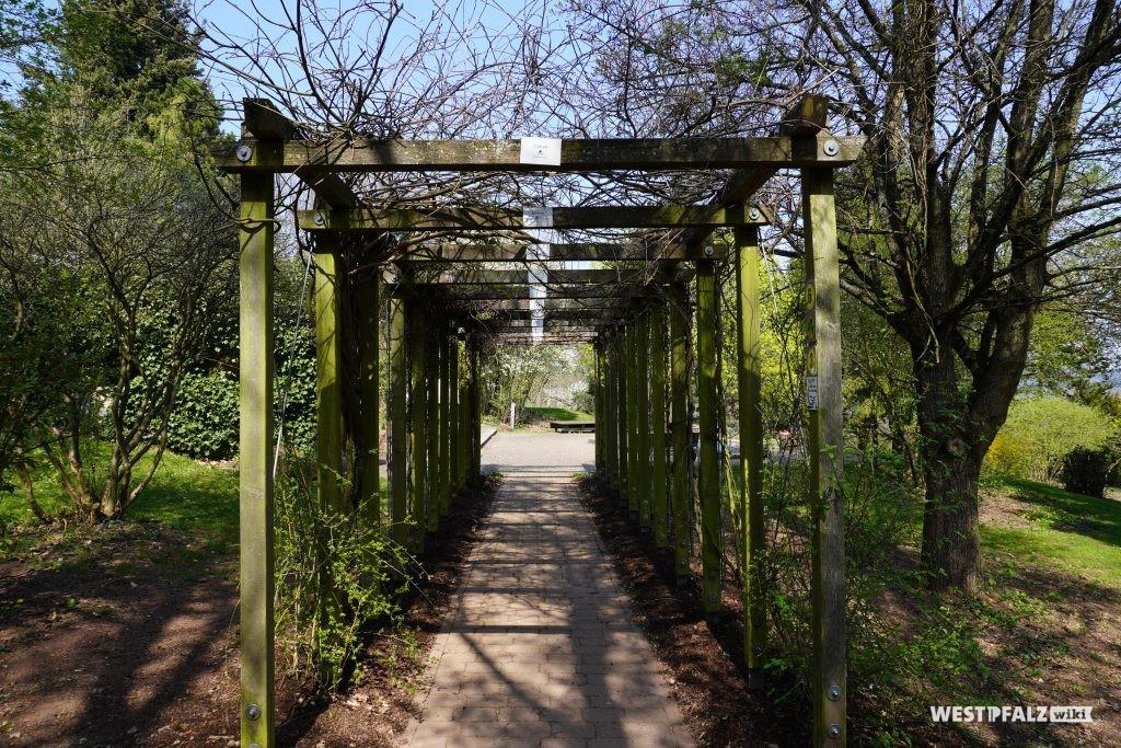 Jahreszeitenpergola im Park der Sinne