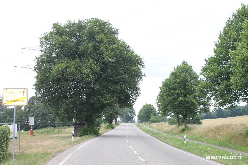 Kaiserstraße zwischen Bruchmühlbach und Hauptstuhl