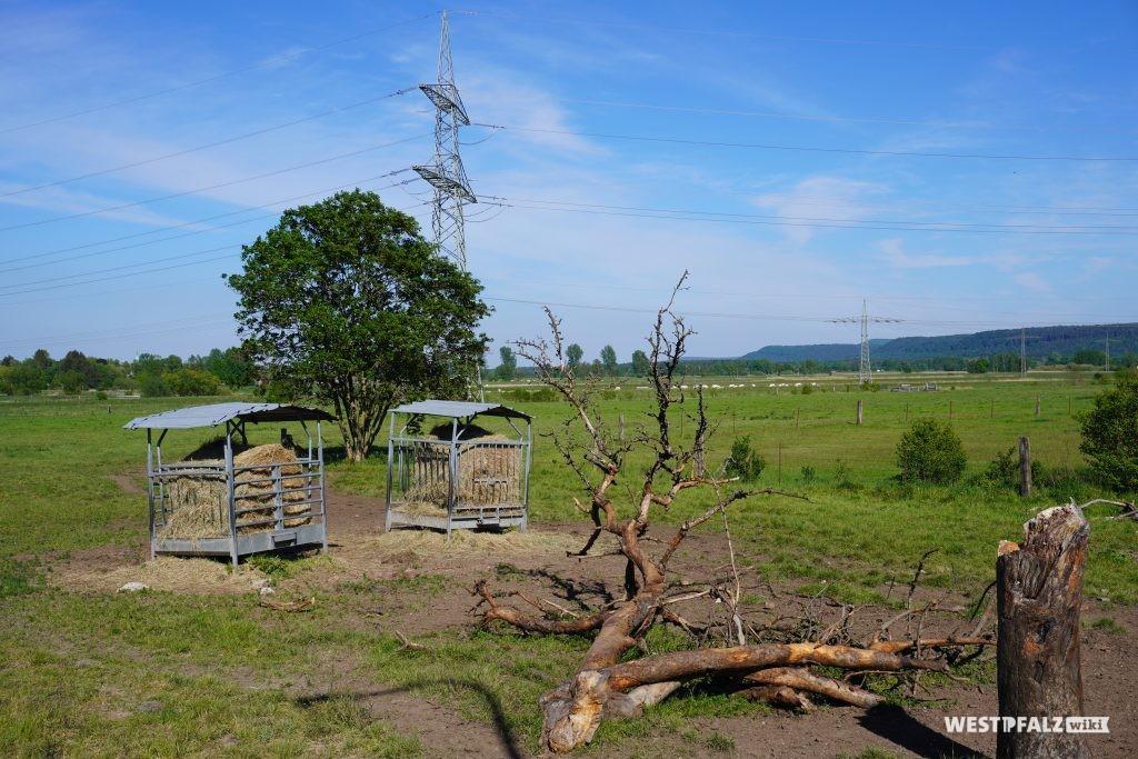 Landwirtschaftliche Nutzung der Mühle