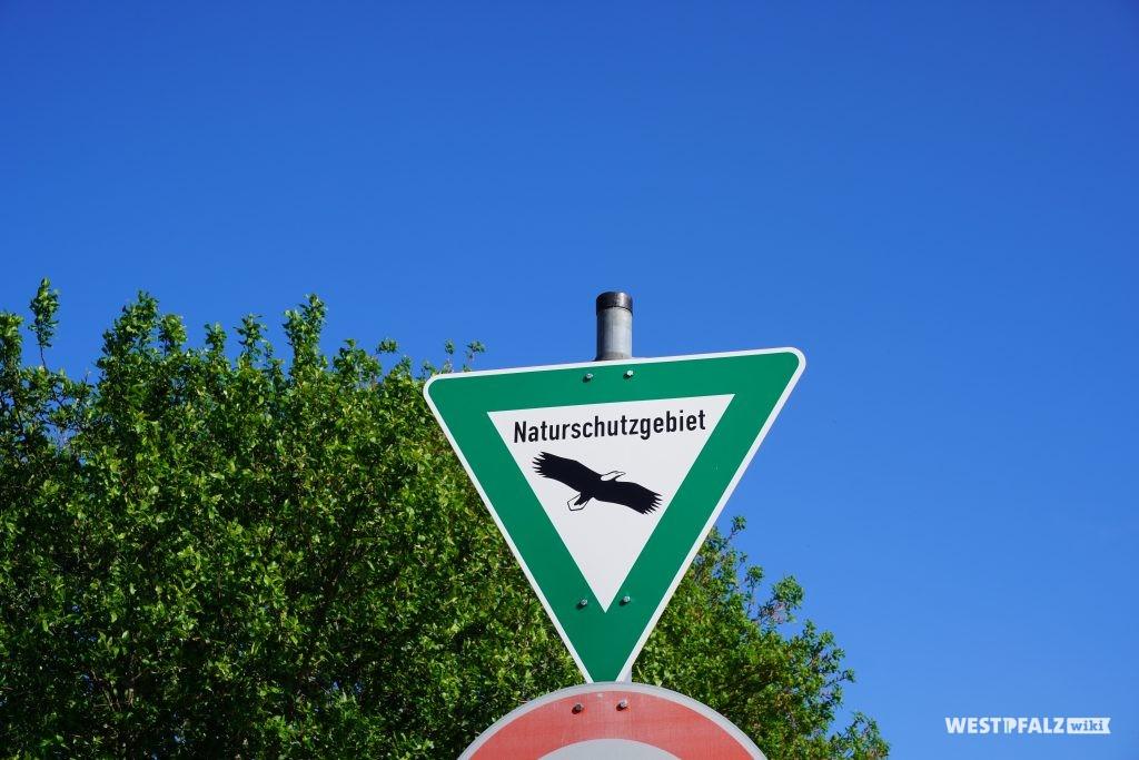 Naturschutzgebiet Scheidelbergerwoog