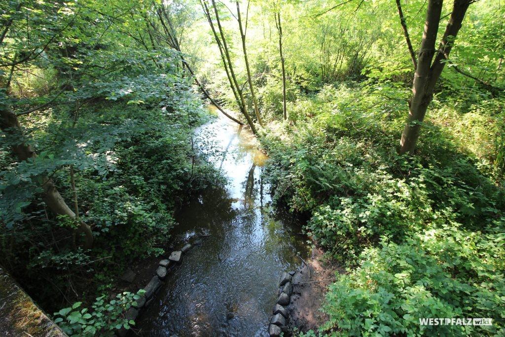 Ehemaliger Panzergraben bei Waldmohr