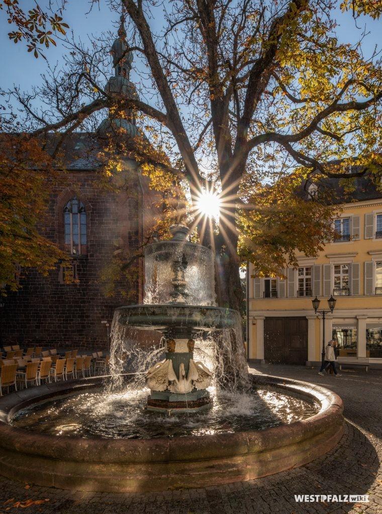 Im Vordergrund der Martinsbrunnen und im Hintergrund die St.-Martinskirche