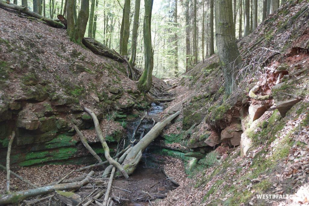 Kleiner Wasserfall in der Elendsklamm