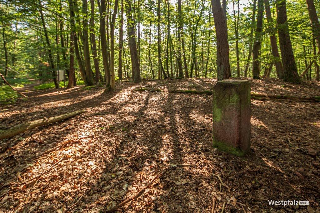 Originaler Fundort des keltischen Wagengrabes