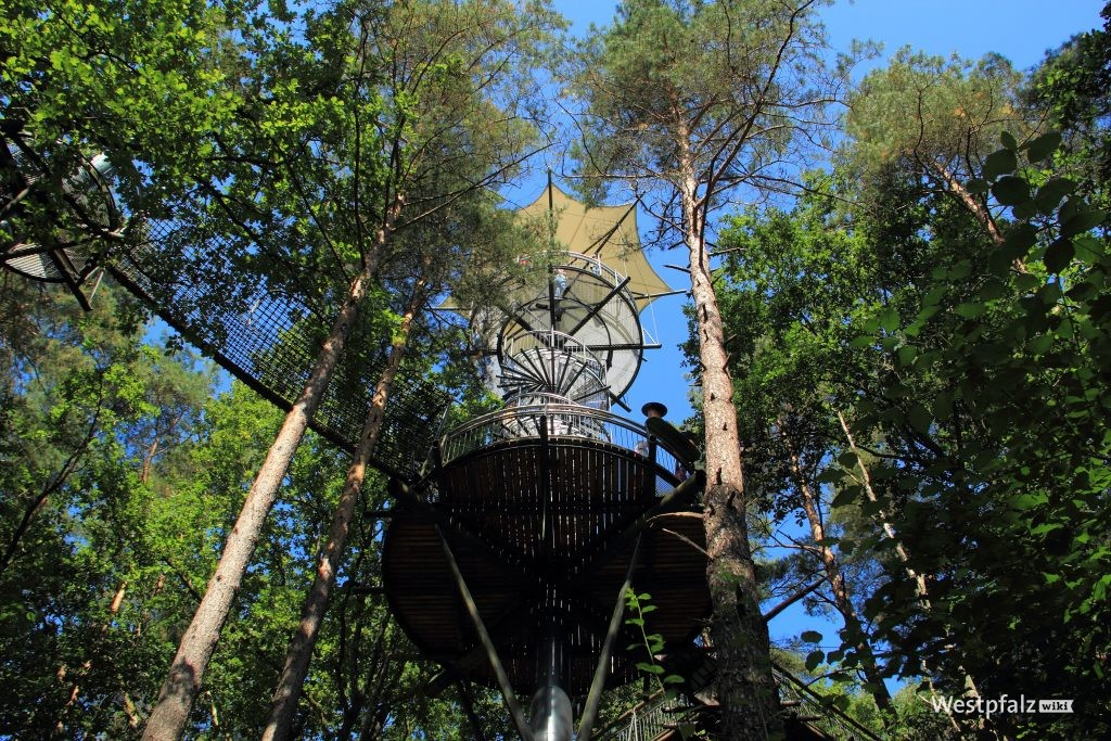 Zentraler Aussichtsturm des Baumwipfelpfades am Biosphärenhaus Fischbach