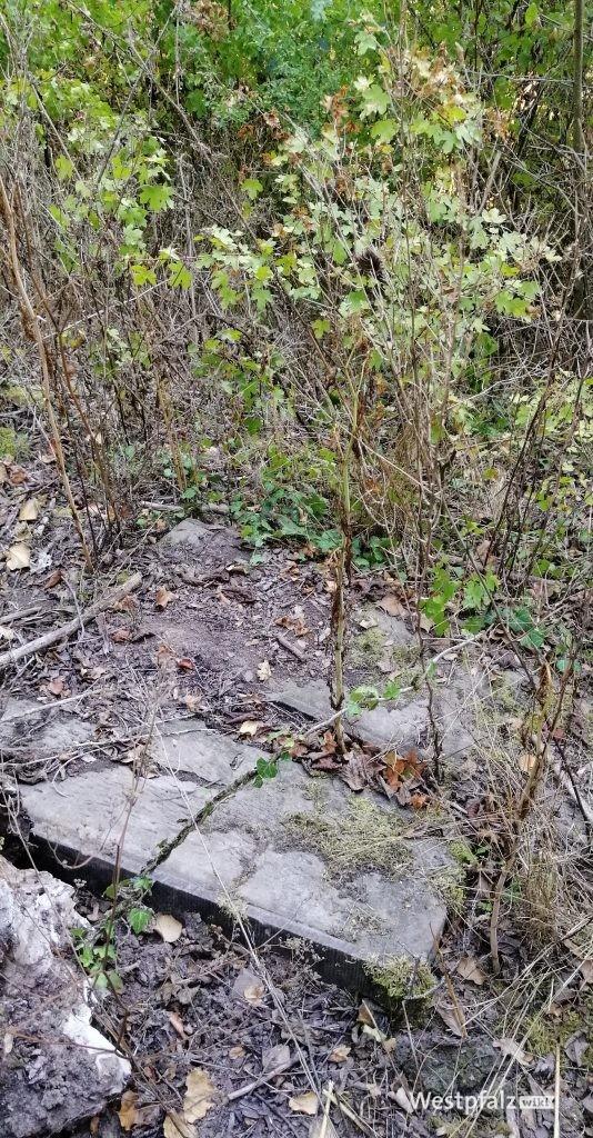 Steinfragmente auf dem Gelände des ehemaligen Felsengartens